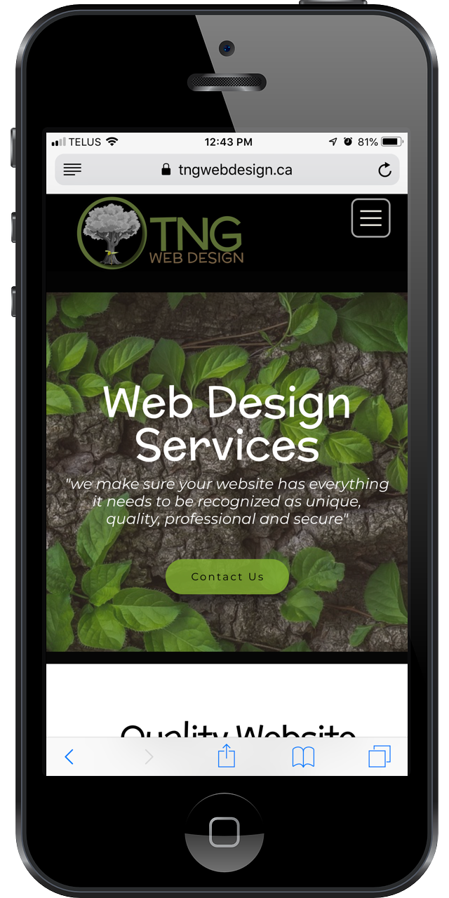 Quality Website Design Phone Demo for TNG Web Design